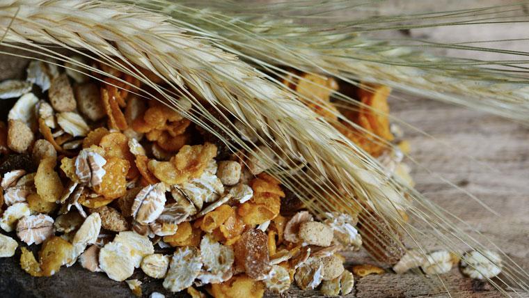 Variare i cereali nell'alimentazione